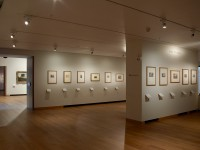 Special Exhibitions - Gallery 60