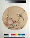 Bird on a flowering branch (EA1960.222)