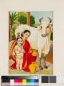 Go-dohana milking the cow