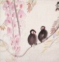 Pair of Java Sparrows (EA1968.72)