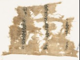 Textile fragment with vines and leaves (EA1984.513)