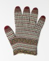 Warren Hastings' glove