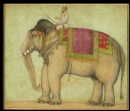 Royal elephant with mahout (front)