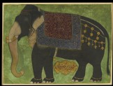 The elephant Khushi Khan (front)