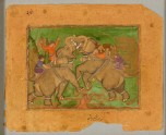 Elephants fighting (front)