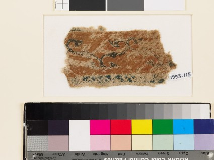 Textile fragment with band of scrolling stems and leavesfront