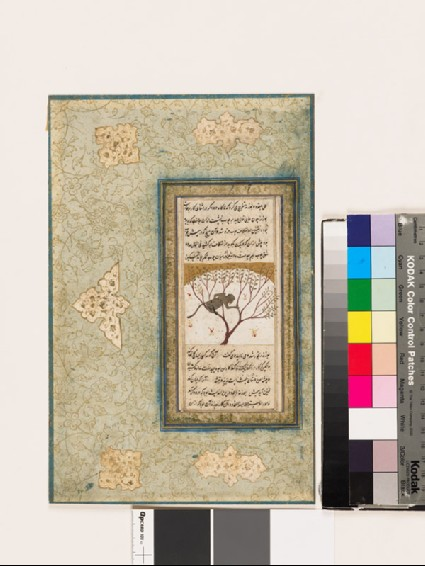 Page from a dispersed muraqqa', or album, depicting a monkey in a treefront