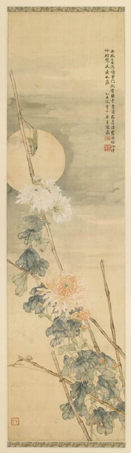 Grasshopper and chrysanthemumfront