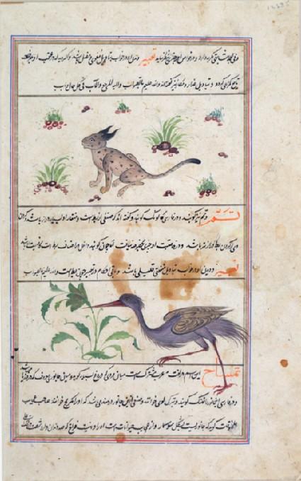 Page from a dispersed manuscript of Qazwini's 'Aja'ib al-Makhluqatfront