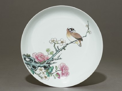 Dish with a bird on a branchtop