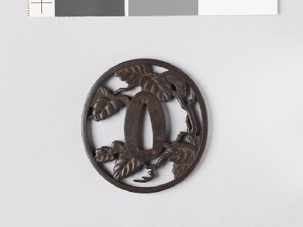 Tsuba with a leafy branch, possibly of paulowniafront