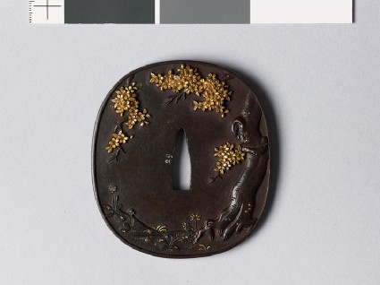 Tsuba with blossoming cherry treefront