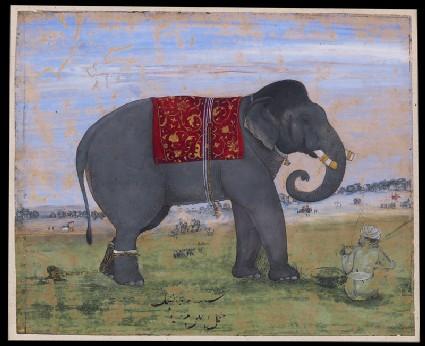Elephant and keeperfront