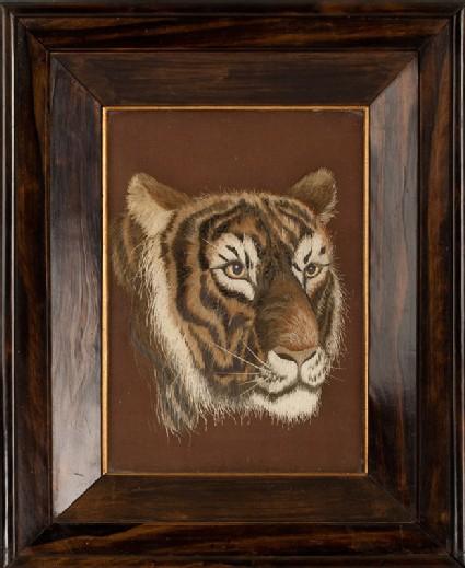 Head of a tigerfront, Cat. No. 33
