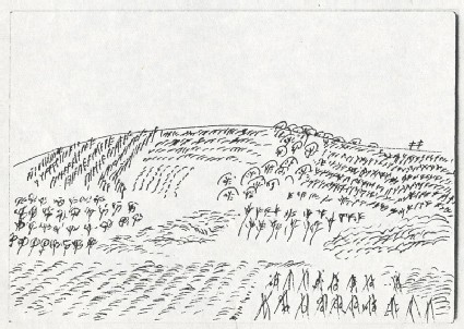 Landscape with cultivated plotsfront