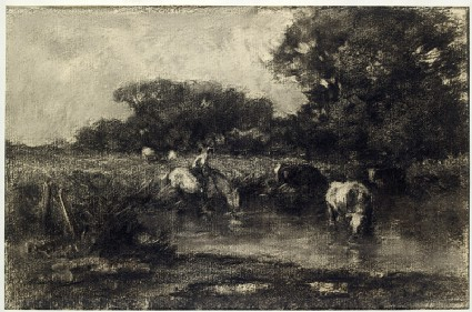 Cows at a watering placefront